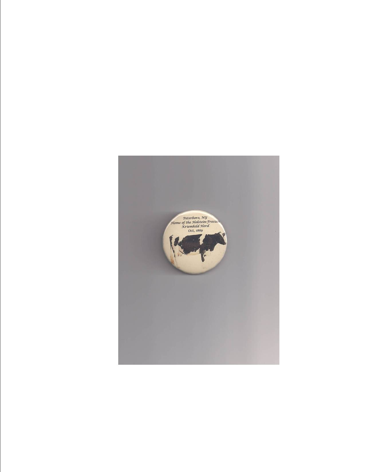 Holstein Cow Button